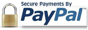 We Securely Accept Paypal