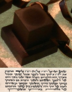 Tefillin Shel Yad worn on the arm with the 7 lines of the Shma Yisrael prayer.